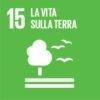 SDG-icon-IT-RGB-15